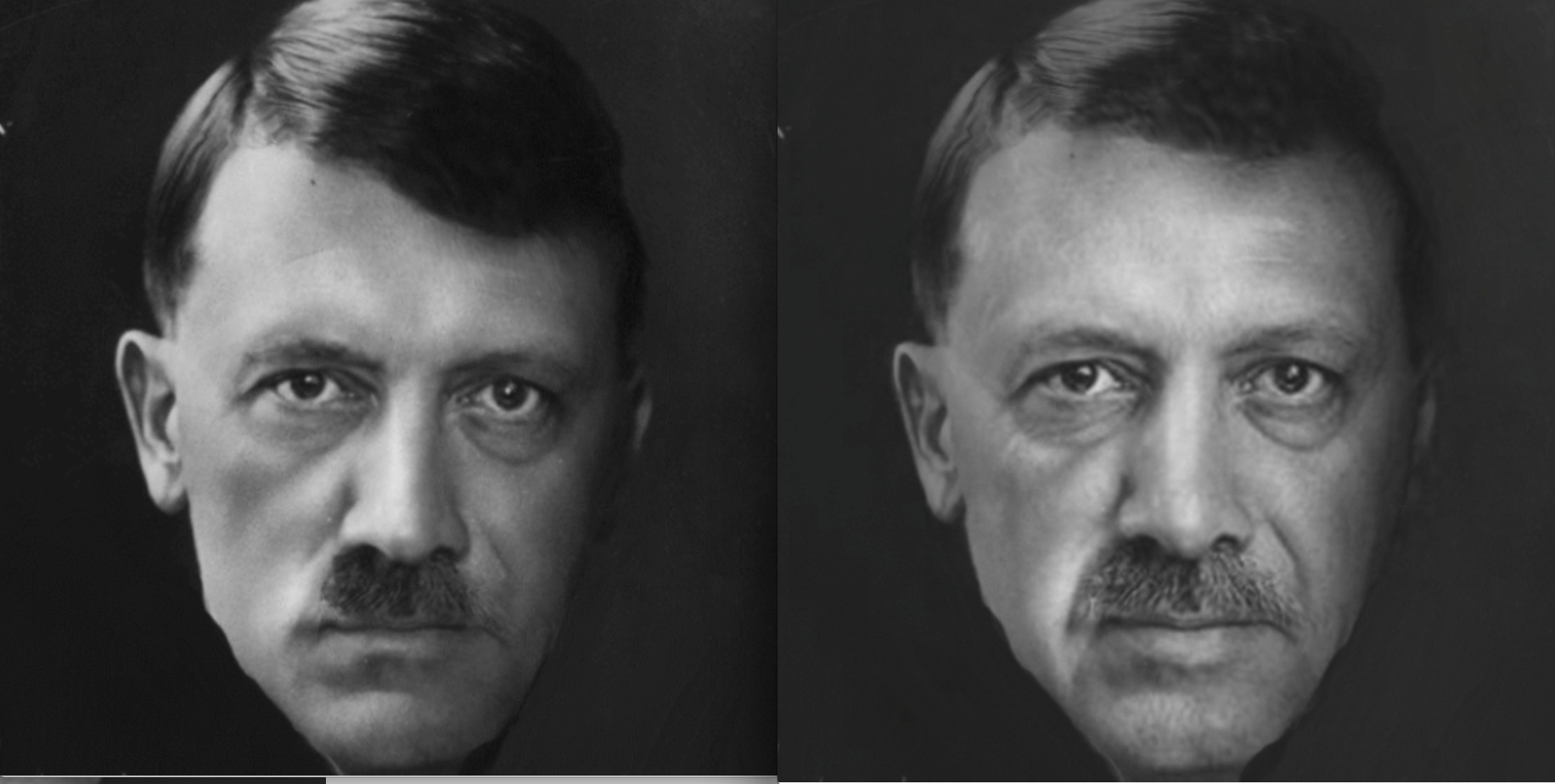 "Erdogan: ""Hitler? A good example"""